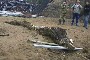 Російські війська знайшли на березі жахливу істоту із морської безодні
