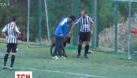 Греческие футболисты несколько раз прекращали матч из-за упрямого козла в воротах