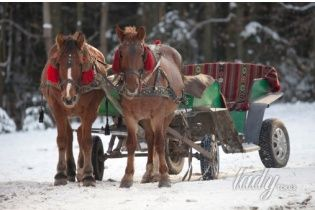 Полтавщина: Новый год и Рождество по-гоголевски
