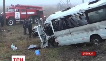 На Запоріжжі в аварію потрапила пасажирська маршрутка