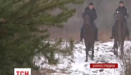 На Днепропетровщине елки от браконьеров оберегает кавалерия