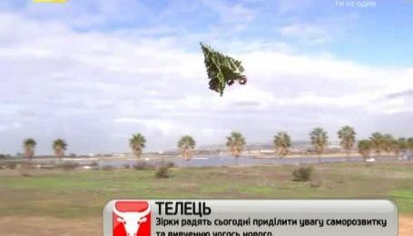 Американец запустил над Сан-Диего летающую новогоднюю елку