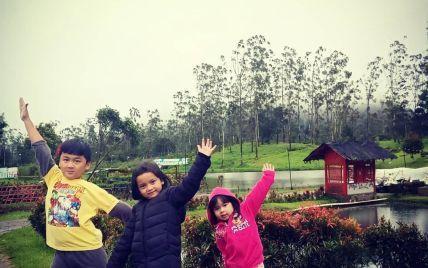 Родичі сподіваються на диво: серед знайдених на місці авіакатастрофи в Індонезії речей упізнали кофту дитини