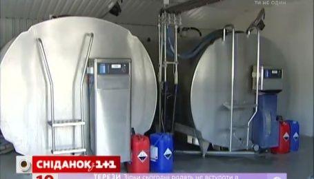 Украинцы могут ожидать уменьшения цены на молочную продукцию