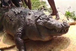 У Бангладеш товстий 100-річний крокодил помер від переїдання