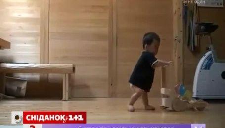 Мережу підірвав ролик про кицьку, яка навчала ходити маленького хлопчика