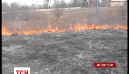 На Житомирщині загинула пенсіонерка, яка спалювала траву на власному подвір'ї