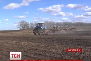 Експерти і аграрії дали свої прогнози, чи буде Україна з хлібом цього року