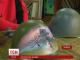 Тернопільські художники, щоб допомогти солдатам, продають на аукціоні розмальовані шоломи