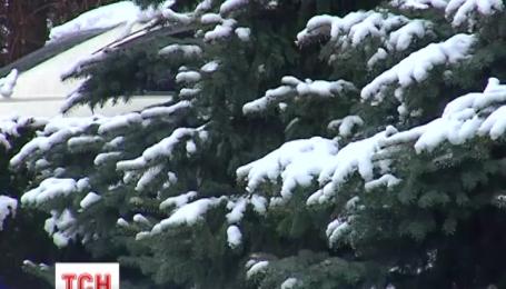 На Буковину вернулась зима