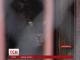 На Харківщині ягуар напав на жінку