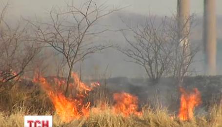 В Україні стартував сезон весняного спалювання сухостоїв на узбіччях