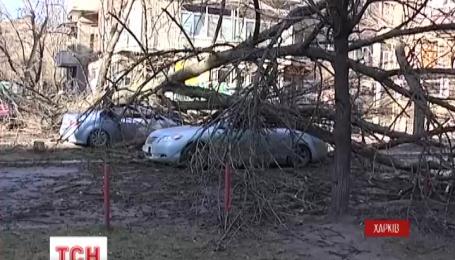 Непогода натворила бед в Харькове