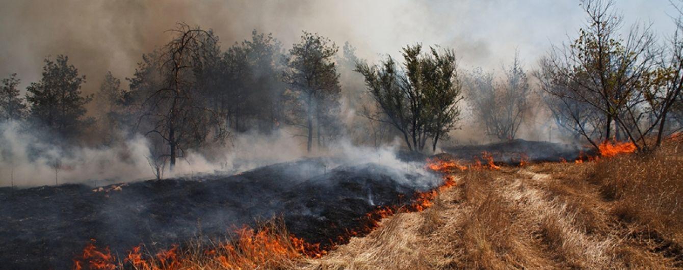 В Черниговской области пенсионер сгорел живьем на собственном огороде: сжигал сорняки