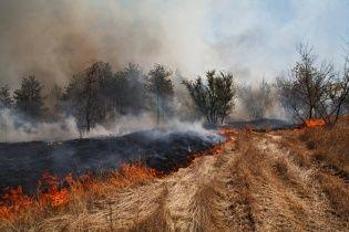 У Чернігівській області пенсіонер згорів живцев на власному городі: палив кукурудзиння