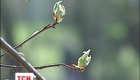 В этом году Пасха стала самой теплой за последние120 лет