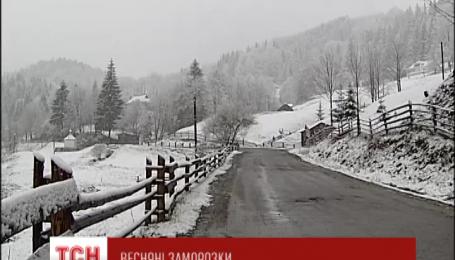 На найближчі дні в Україну прийшли заморозки та мокрий сніг