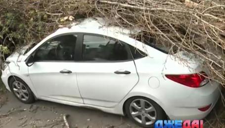 В столице сильный ветер срывал крыши и повалил деревья прямо на авто