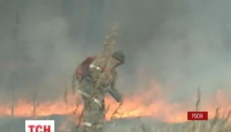 Площа лісових пожеж у Росії зросла до 170 тисяч гектарів