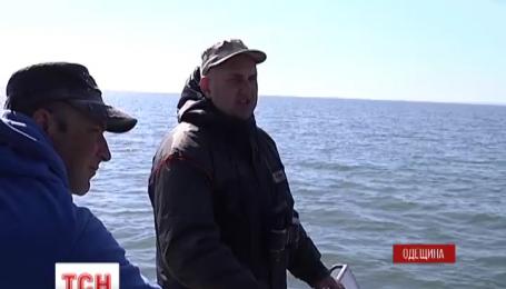 Одеські екологи почали вивчати наслідки масштабної пожежі в заплавах дельти Дністра
