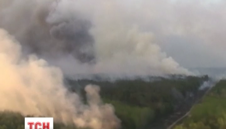Чернобыльский лес скорее всего подожгли
