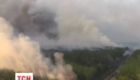 В лесах Чернобыля ликвидировали все 15 очагов огня