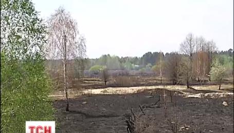 Журналисты убедились, что пожар возле Чернобыля ликвидирован