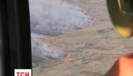 Пожежа у чорнобильському лісі змусила знову дістати дозиметри
