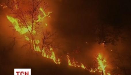В США горит около 400 гектаров леса