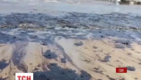 В Калифорнии от разлива нефти страдают пляже Санта-Барбары