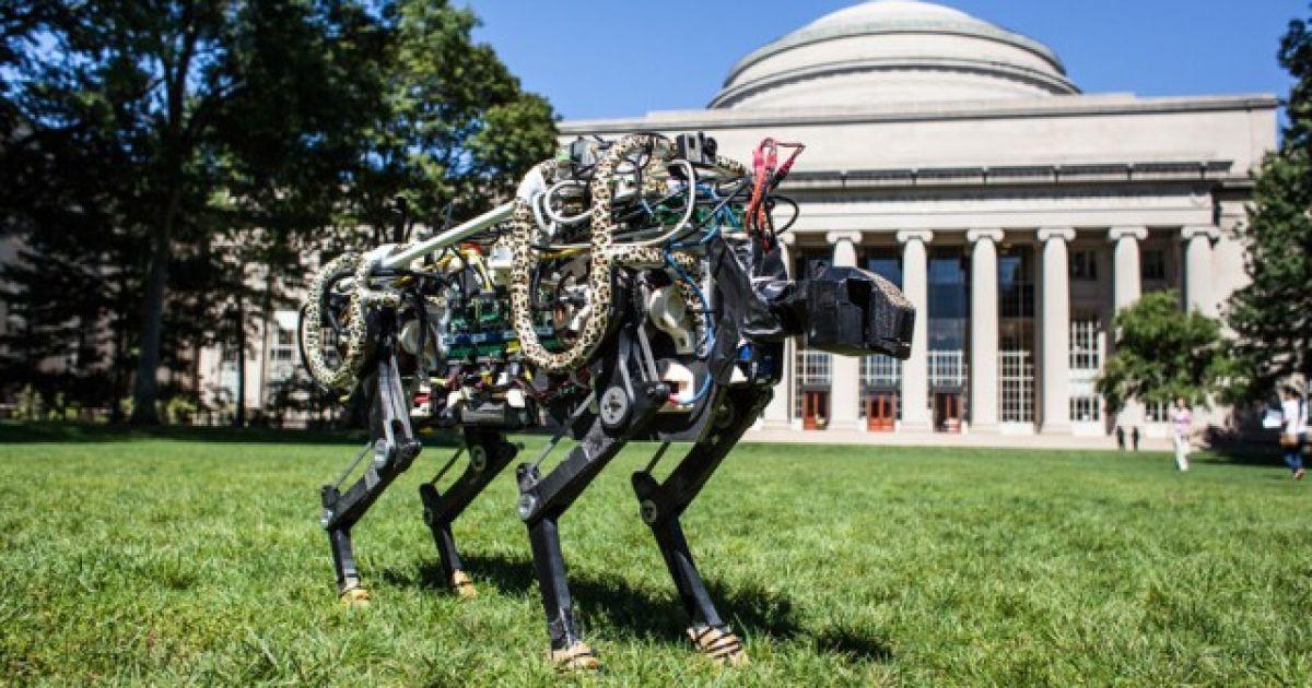 Инженеры создали уникального робота-гепарда, который самостоятельно прыгает через барьеры