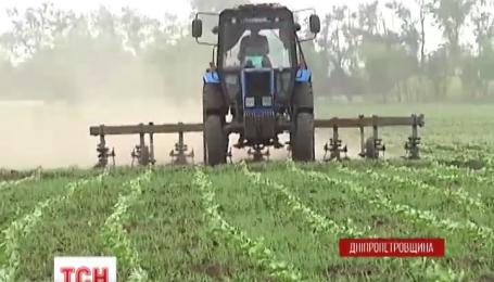 На Днепропетровщине у крестьян украли более 700 гектаров земли