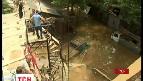 У Тбілісі на людей напав тигр, який під час повені втік із зоопарку