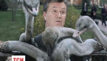 Останнє інтерв'ю Януковича провокує користувачів соцмереж на плідну творчість