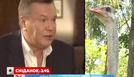 Страуси без Януковича не розмножуються