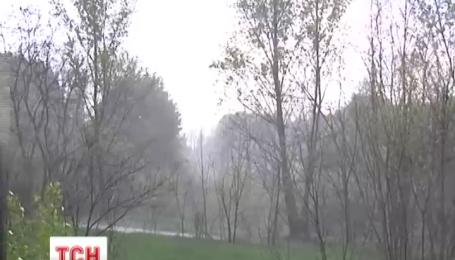 Дощі та грози прогнозують синоптики в найближчі кілька днів