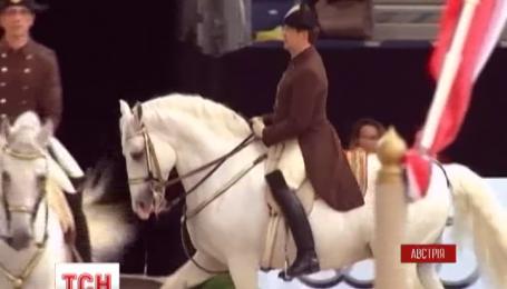 Конный спектакль в центре Вены устроила знаменитая Испанская школа верховой езды