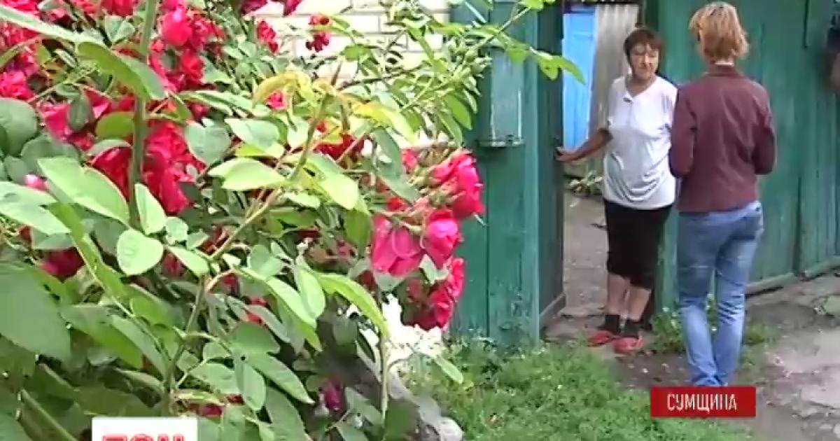 Видео как девка преет член дядке фото 342-443