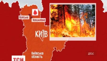 В чернобыльской зоне огонь охватил 130 гектаров