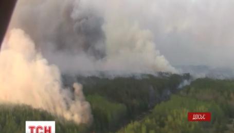 У чорнобильській зоні горять торф'яники, суха трава та очерет