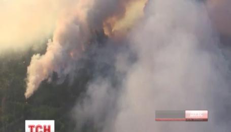 В Чернобыльской зоне горит более ста гектаров леса