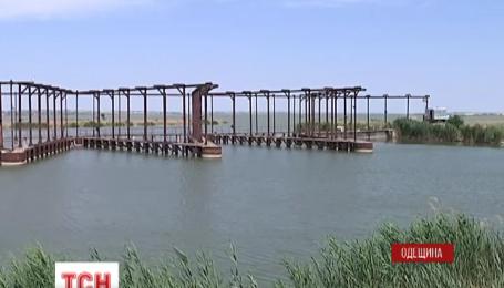 В Одесской области снова заговорили о спасении уникального и крупнейшего в регионе озера Сасык