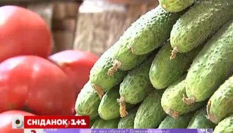 Украинские огурцы стремительно дешевеют