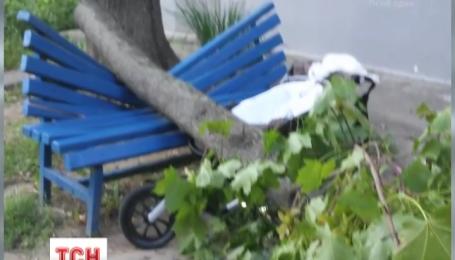У Харкові дерево травмувало мати с немовлям