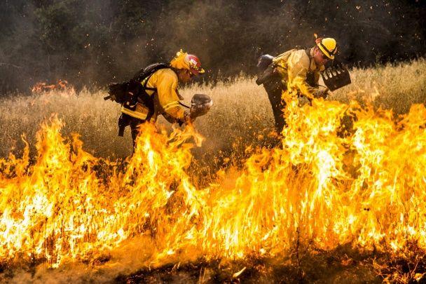 У Каліфорнії не вщухає масштабна лісова пожежа, є загиблі