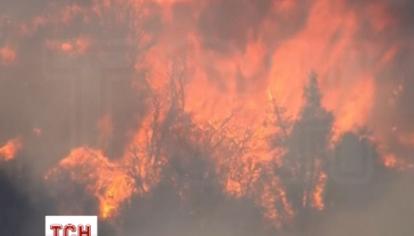 У штаті Каліфорнія оголошено надзвичайний стан через лісові пожежі