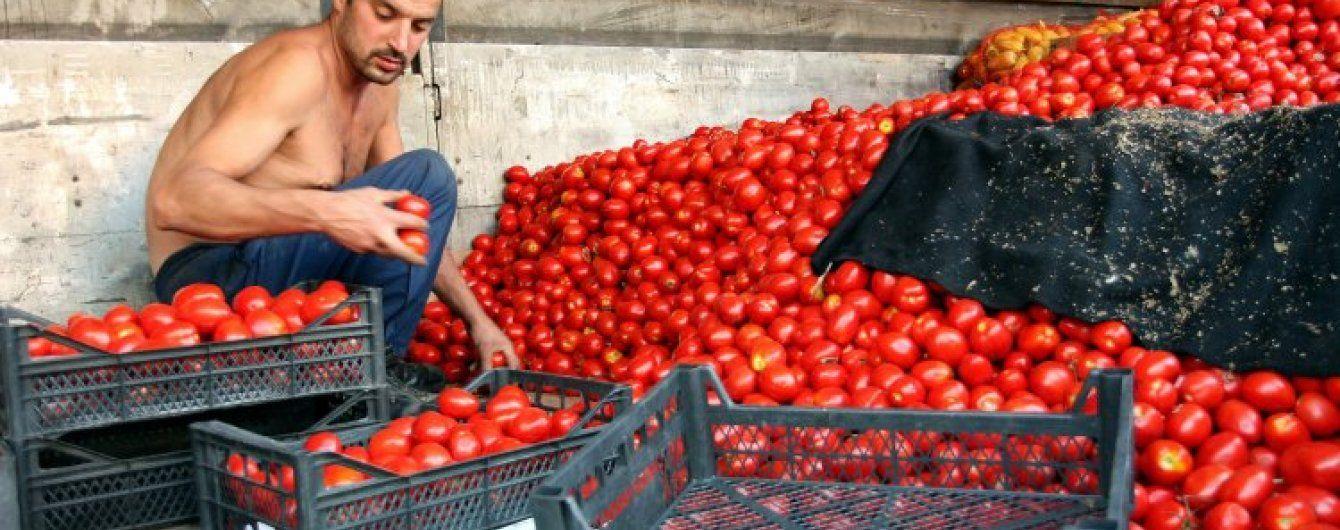В России водитель спас санкционные помидоры от уничтожения, угнав фуру