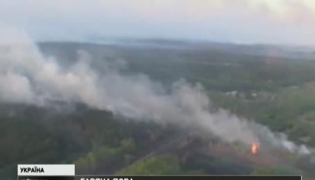 Горит 60 гектаров чернобыльского леса