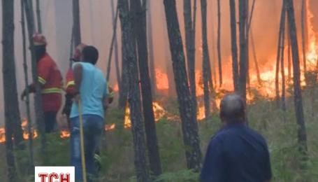 У Португалії палає ліс