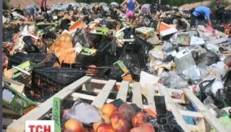 В России за сутки уничтожили 320 тонн иностранной еды